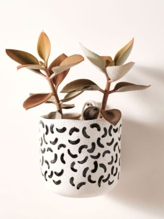 Paterna Black Crescent Planter Pot 15cm